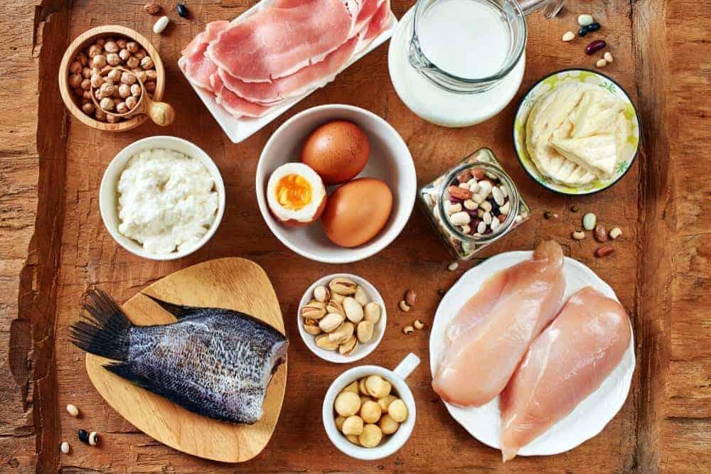 prehrana djece sportaša proteini